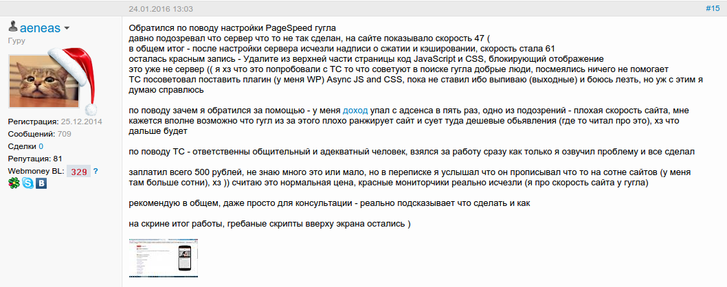 Отзыв об оптимизации сервера для Google Pagespeed